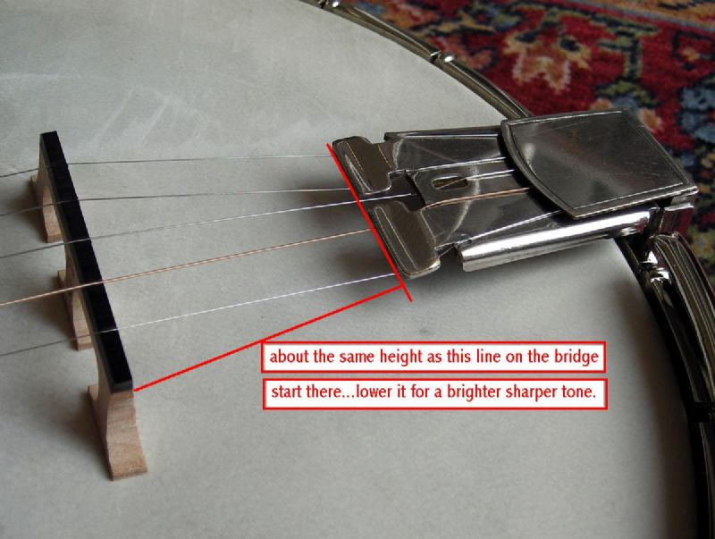 Should my tailpiece rest on my tension hoop? - Discussion Forums