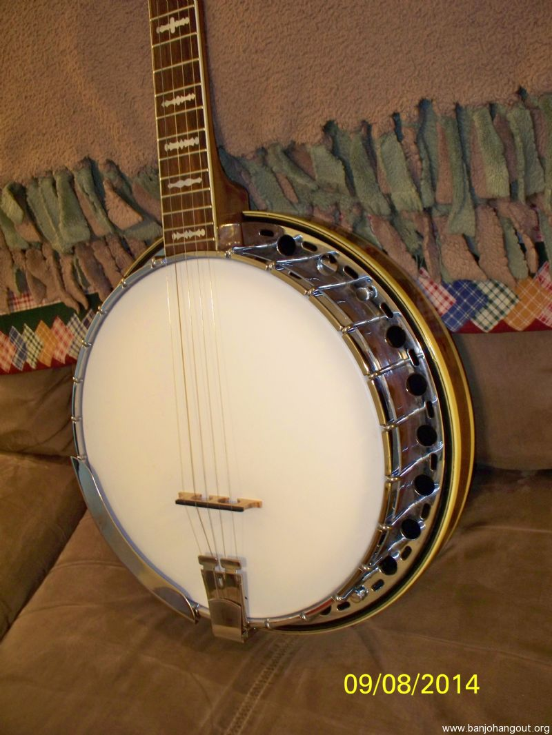 sold pending approval fender artist used banjo for sale at. Black Bedroom Furniture Sets. Home Design Ideas