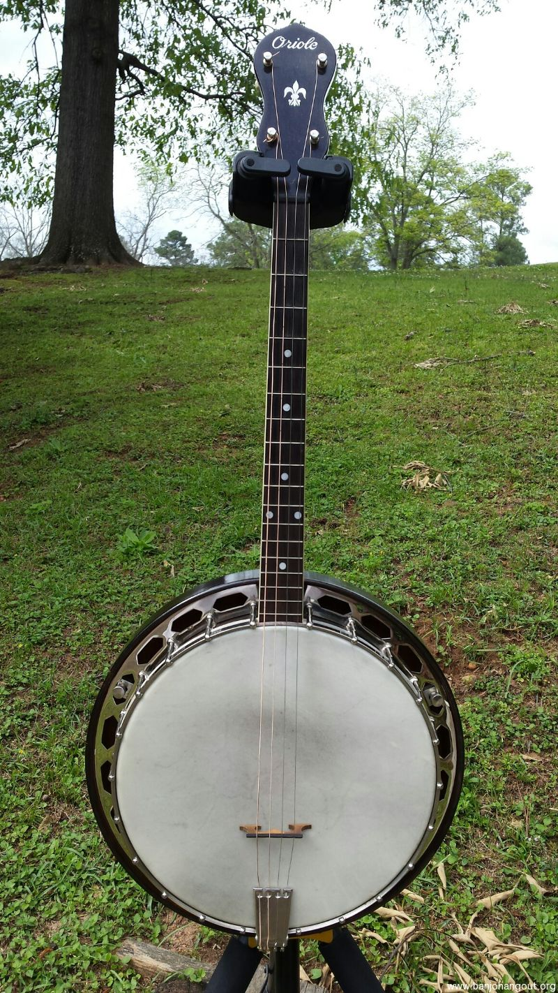 Used Gibson Banjos For Sale Agcrewall
