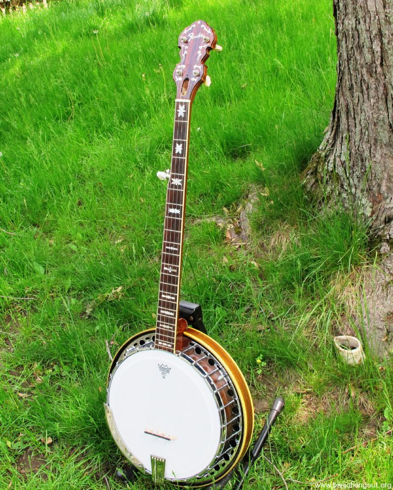 fender archtop used banjo for sale at. Black Bedroom Furniture Sets. Home Design Ideas
