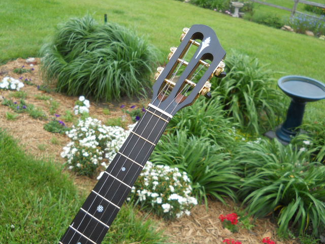 Your Thoughts On Open-Back Banjo Choices Welcomed! - The