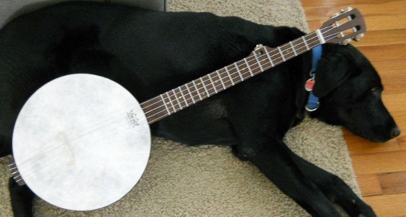 Build Banjo Using Hand Drum
