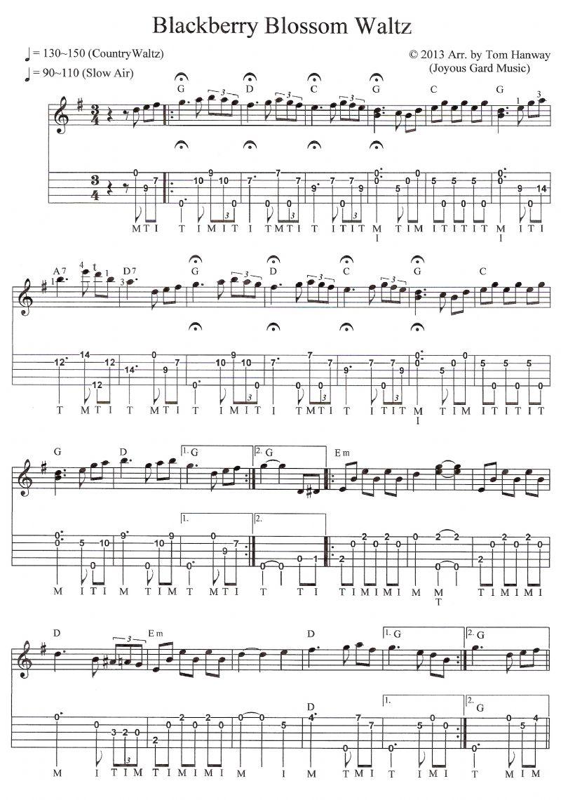 blackberry blossom banjo tab