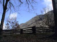 View BluegrassBanjo's Homepage