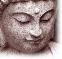 View Lotus' Homepage