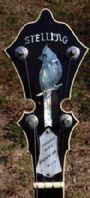 banjogirl1980