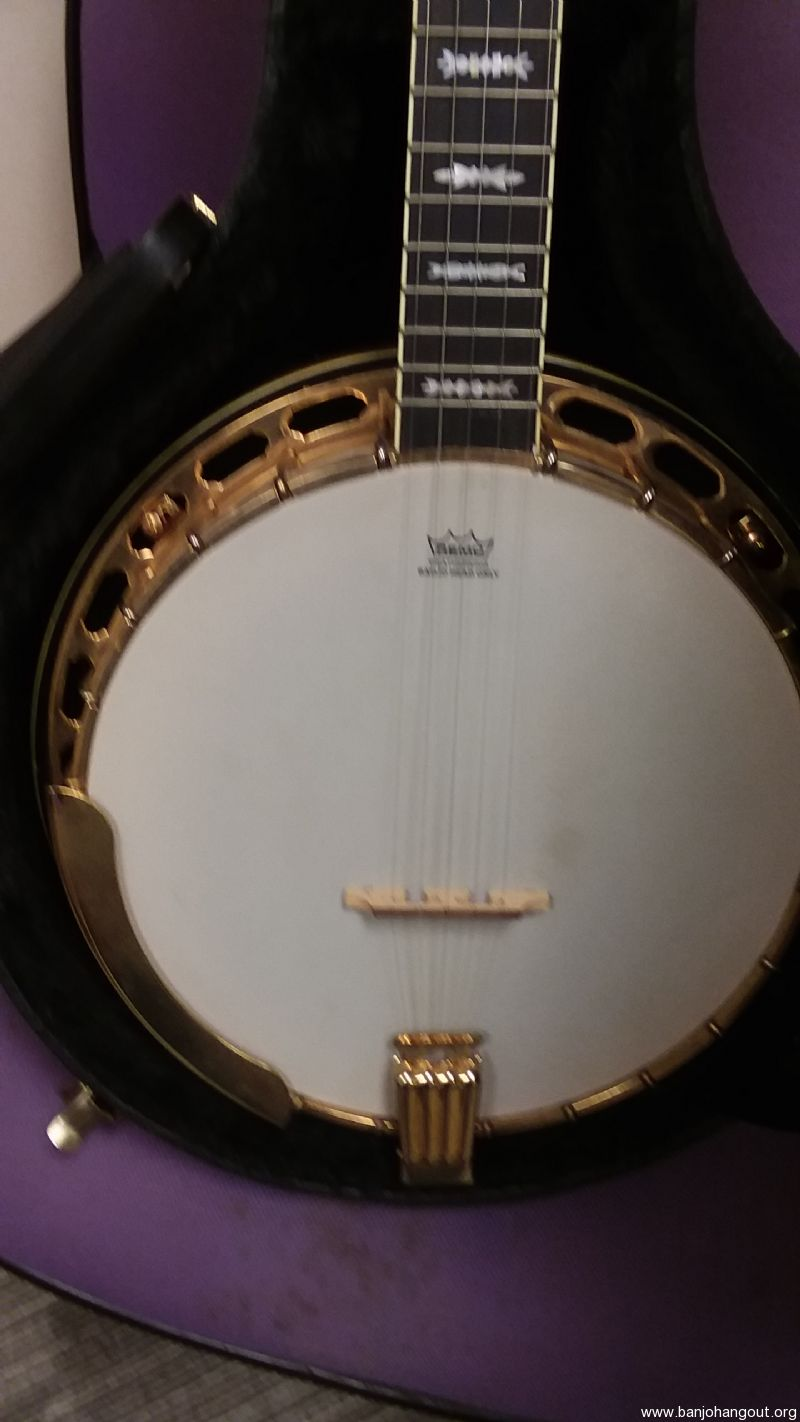 for sale fender banjo for sale. Black Bedroom Furniture Sets. Home Design Ideas