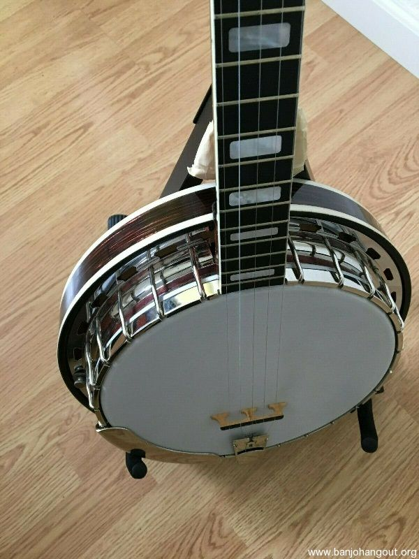 For Sale - 5 String Vega Professional Banjo