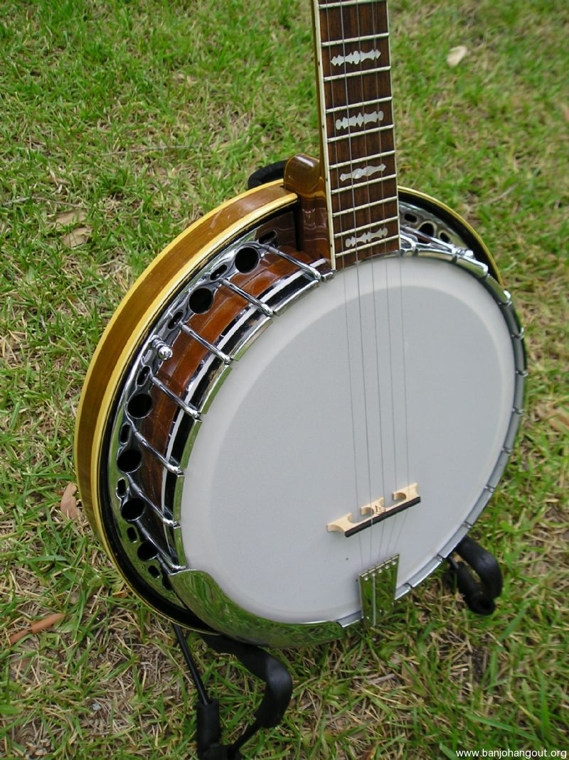 fender artist archtop used banjo for sale at. Black Bedroom Furniture Sets. Home Design Ideas