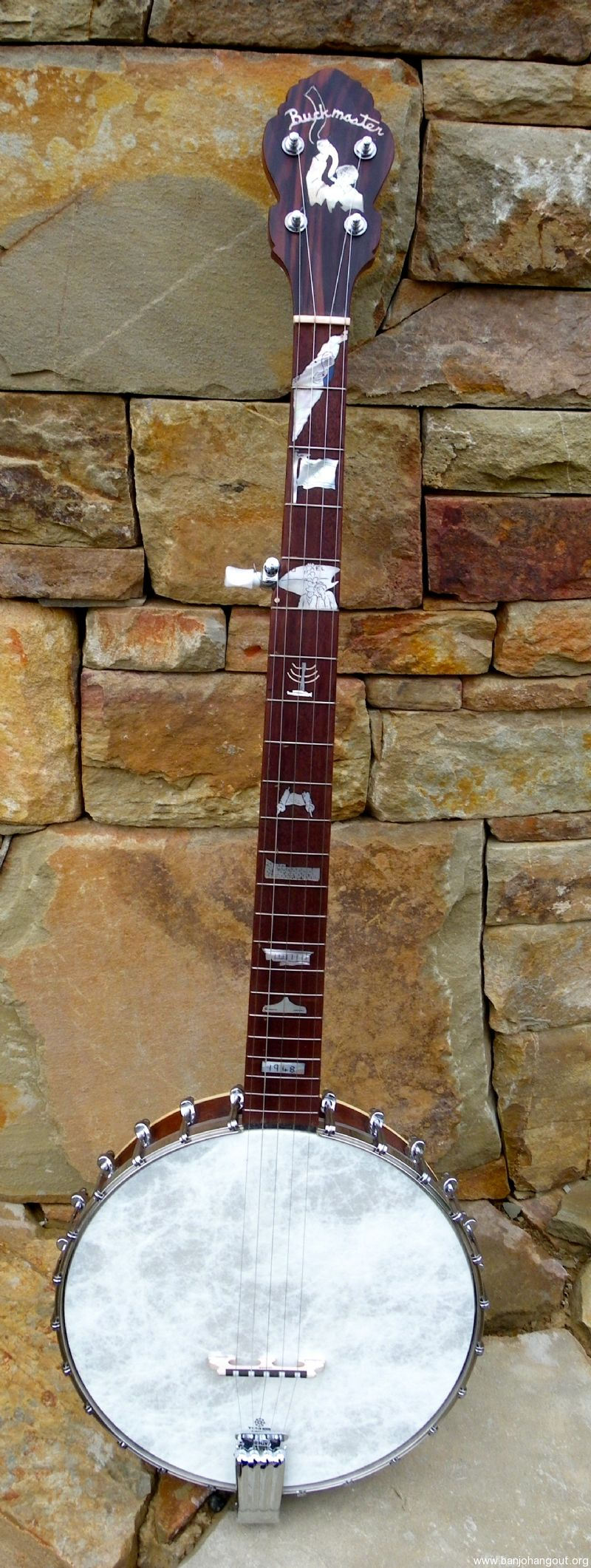 Buckmaster 5 string open back,State of Israel theme inlays  - Used