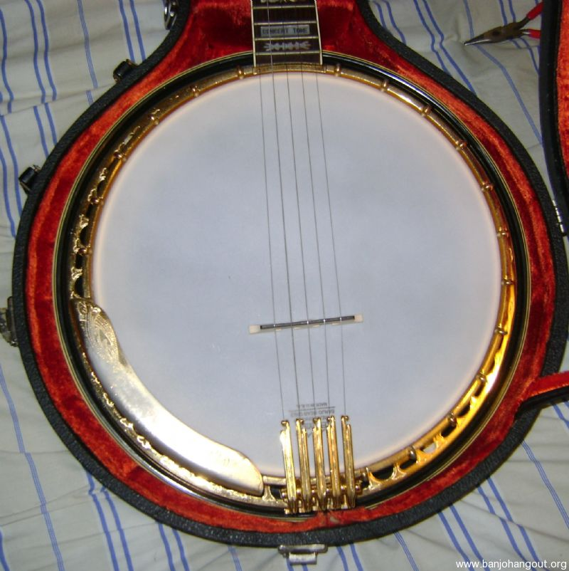 1969 gold plated fender concertone used banjo for sale from banjo vault. Black Bedroom Furniture Sets. Home Design Ideas