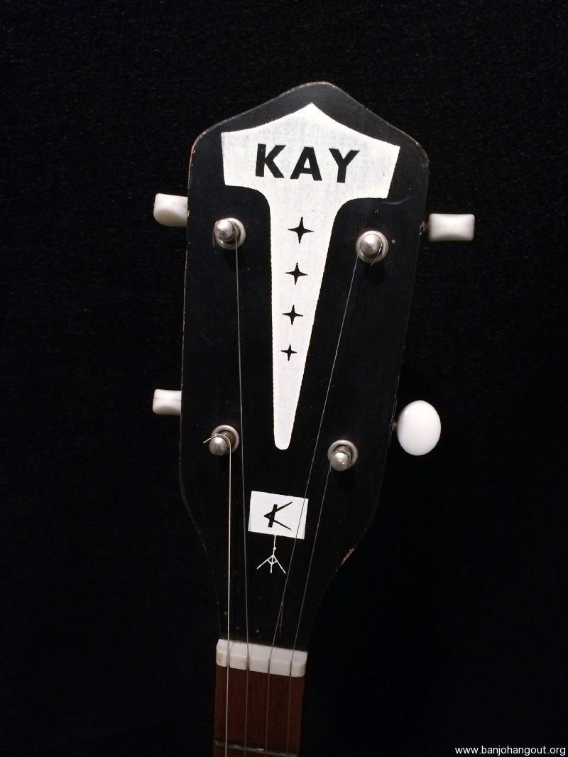 kay banjo models