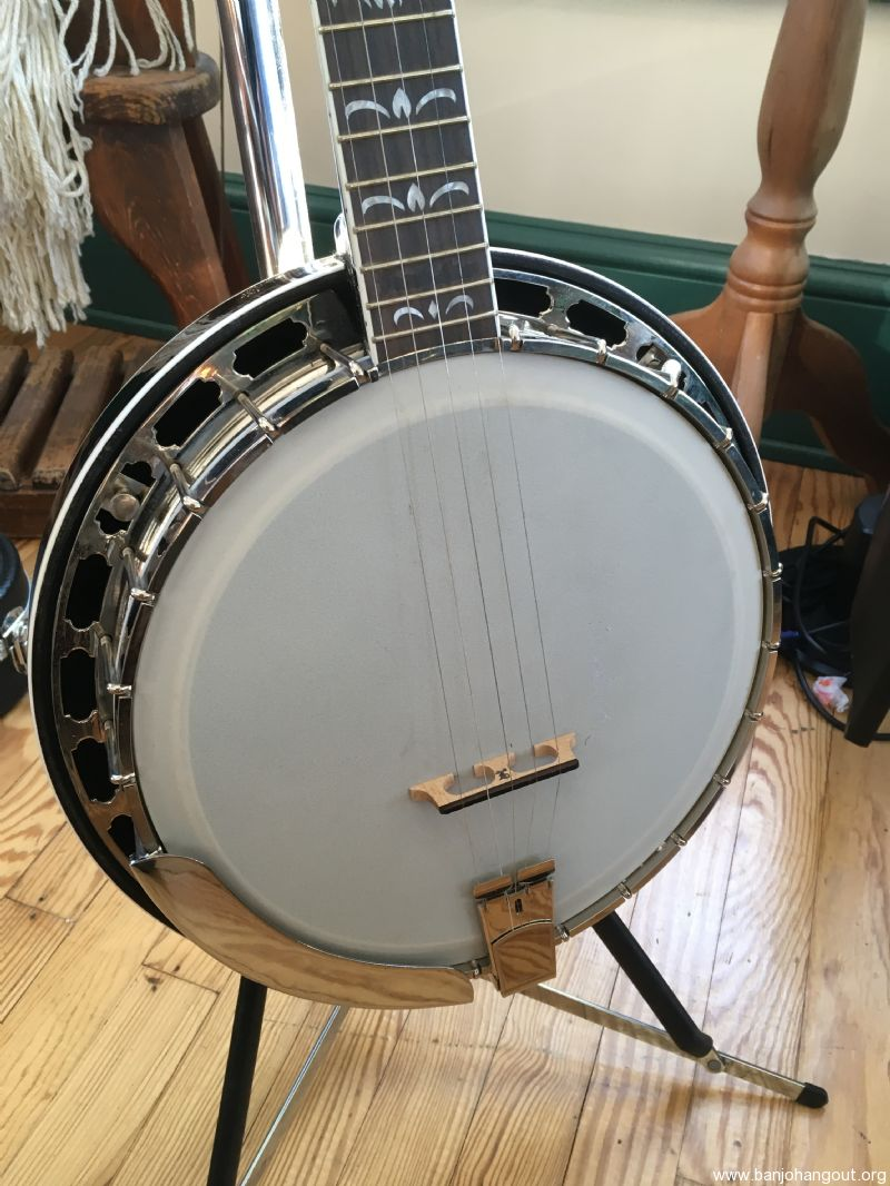 For Sale - Recording King Archtop Banjo TB-11 style Pearloid RK-R60A