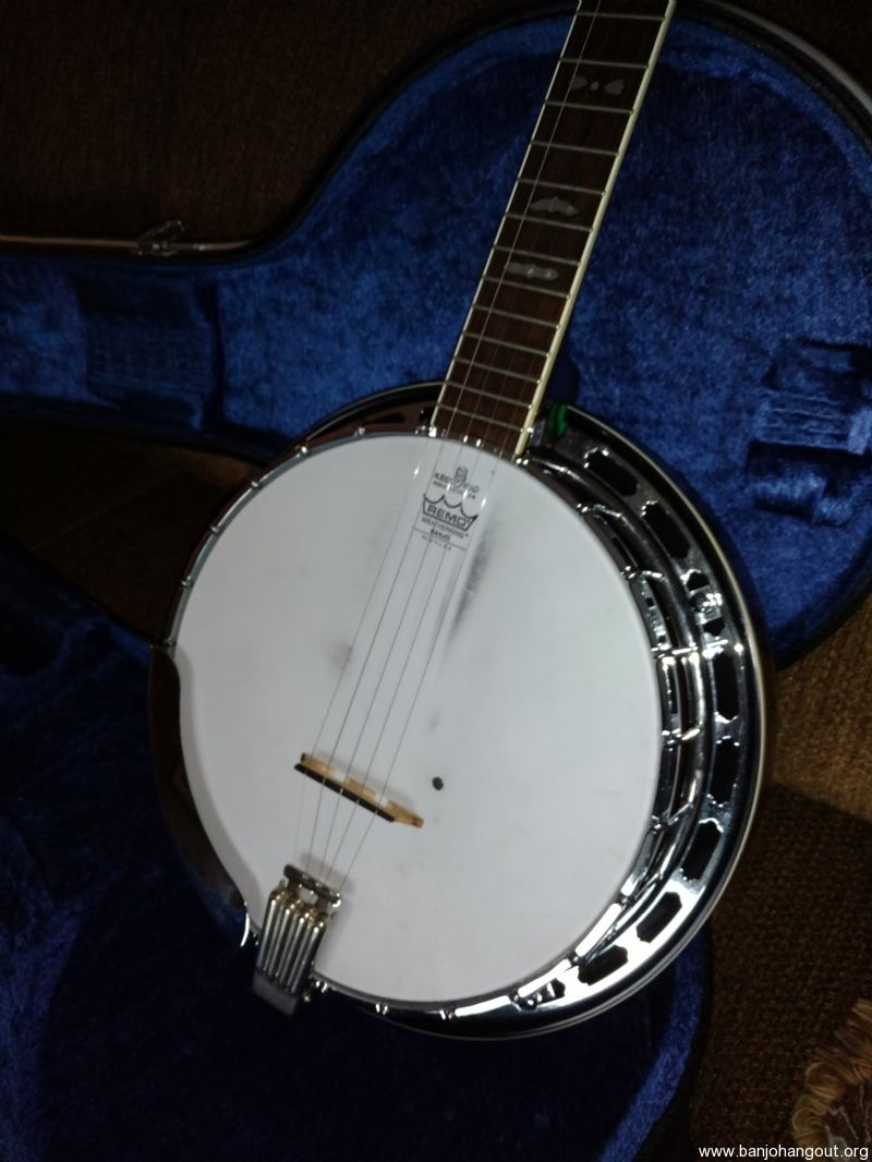 sold fender leo 5 string banjo used banjo for sale at. Black Bedroom Furniture Sets. Home Design Ideas