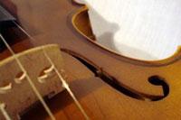 View violingirl00's Homepage
