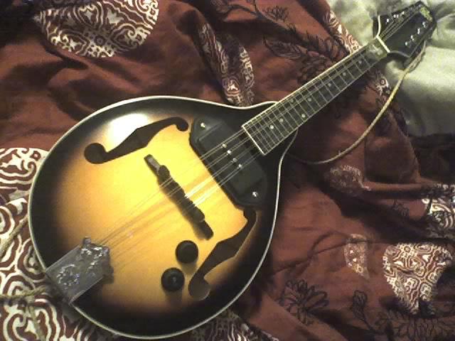 Mandolin 5 string mandolin chords : Newbie. Electric 5-String Octave vs Guitar